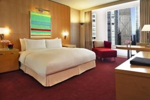 Hotel Sofitel Chicago Water Tower- 25 rooms (*)